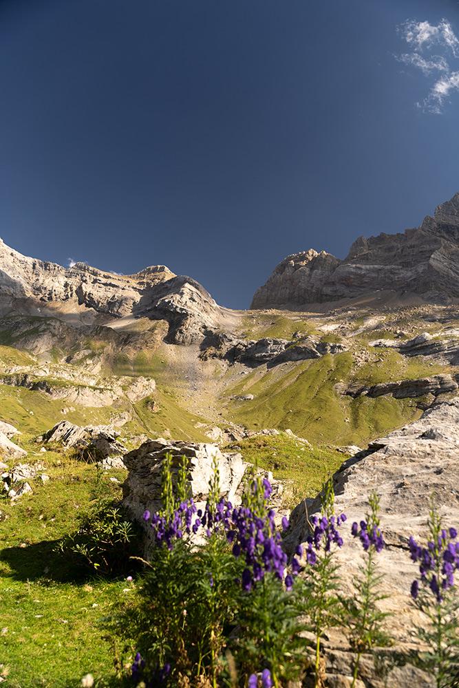 manon-probst-pyrenees12